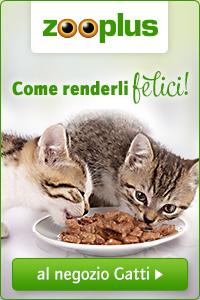 Zooplus Clicca su questo banner!  Potrai acquistare ottimi prodotti per il tuo gatto su Zooplus e contemporaneamente donerai alla Gatteria un piccolo buono acquisto. Per te nessun aggravio di costi e per noi un grande aiuto!