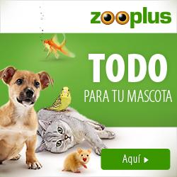 NUEVO 2019 zooplus 250x250