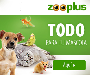 NUEVO 2019 zooplus 300x250