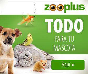 NUEVO 2019 zooplus 336x280