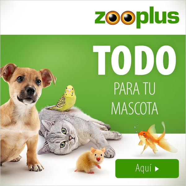 NUEVO 2019 zooplus 600x600