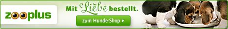 Kaufberatung für Hundebetten - Zooplus-Hundebetten