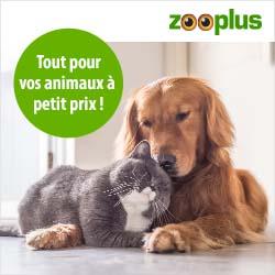 Animalerie en ligne Zooplus : tout pour vos animaux à petits prix