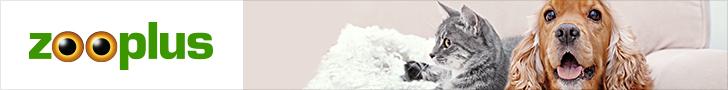 Les litières minérales